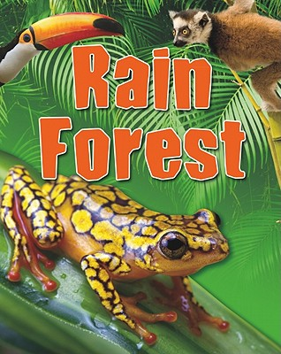 Rain Forest By Levete, Sarah